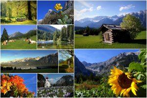 1-Frühling, Sommer, Herbst